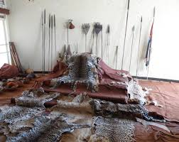 MOST TRUSTED TRADITIONAL HEALER IN AFRICA WITH DIV